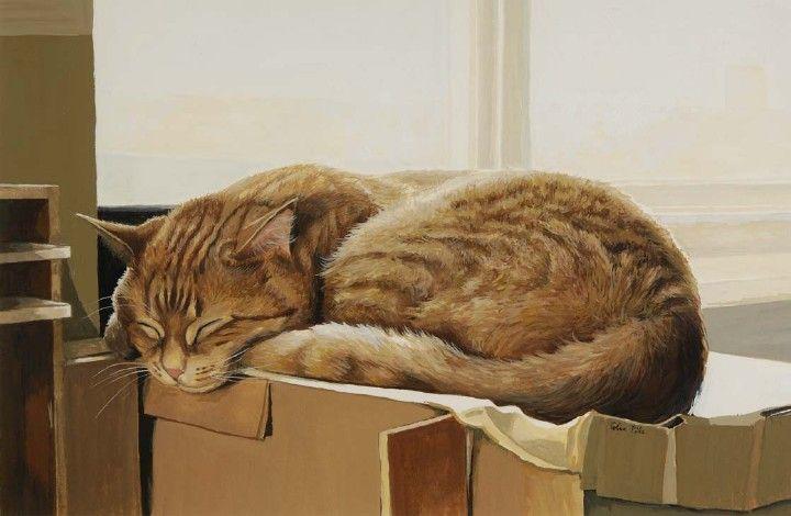 http://rulez-t.info/uploads/posts/2009-05/1243521013_cats_01.jpg